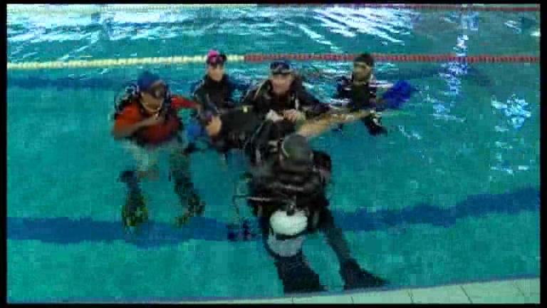 La piscina municipal acogi un curso de iniciaci n al for A tua piscina ta cheia de ratos