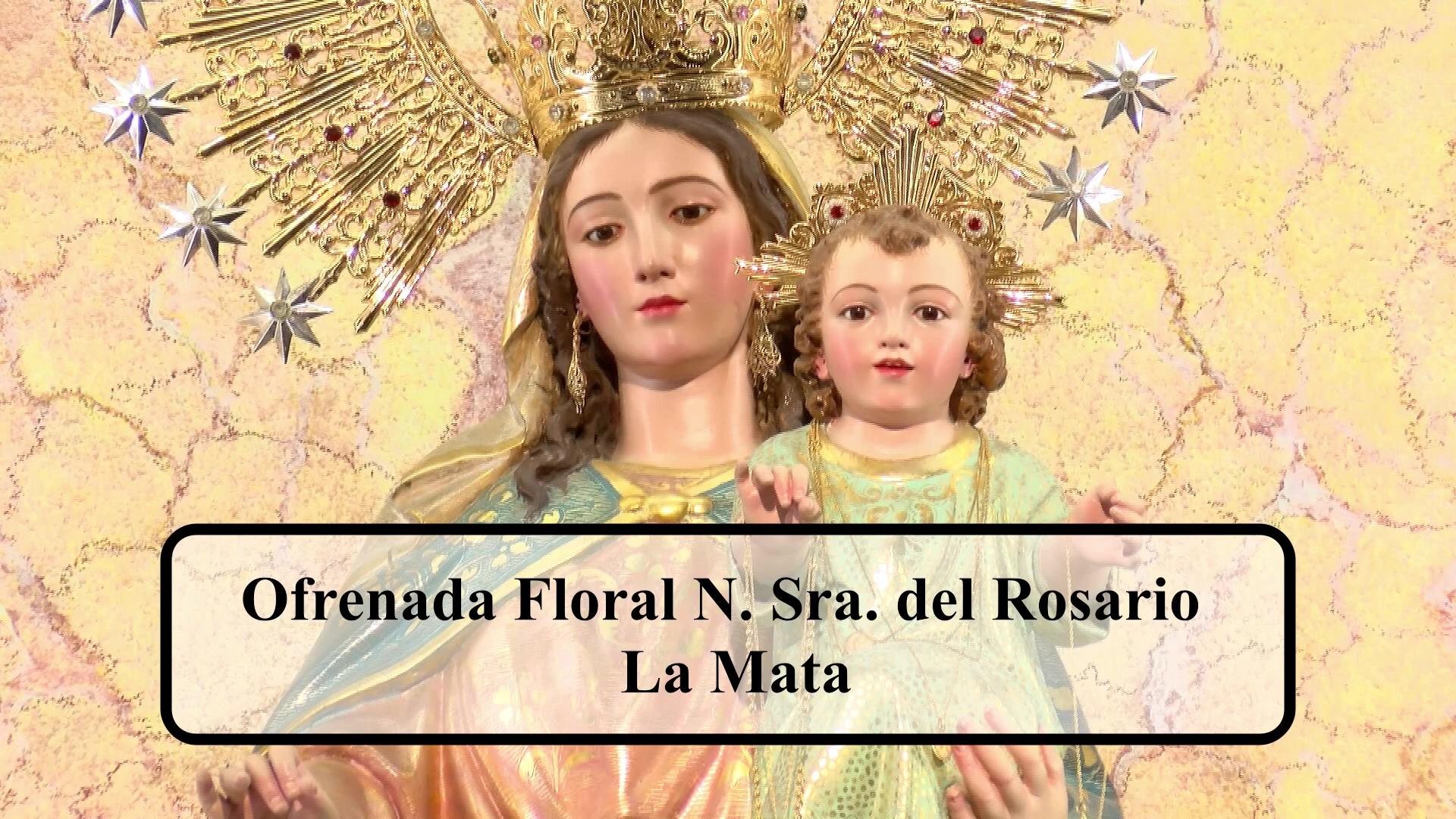 Ofrenda Floral Virgen del Rosario La Mata