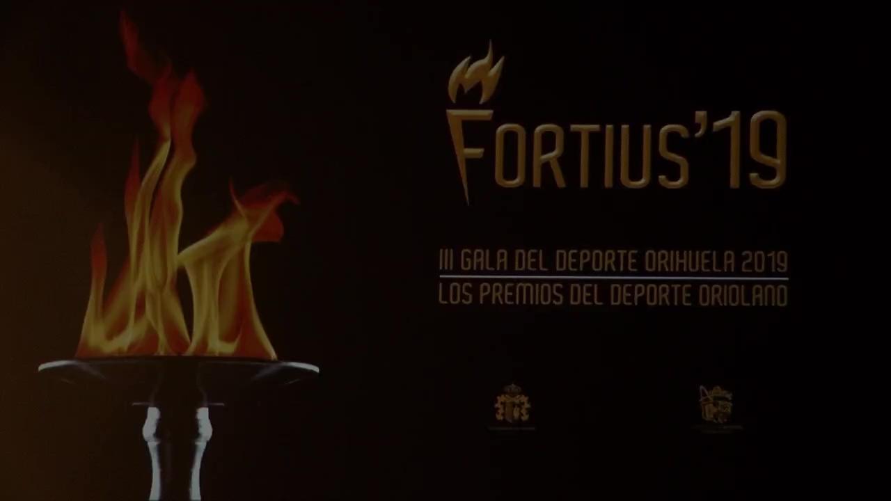 Gala Fortius 19